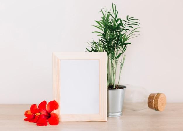 Bloemensamenstelling Gratis Foto