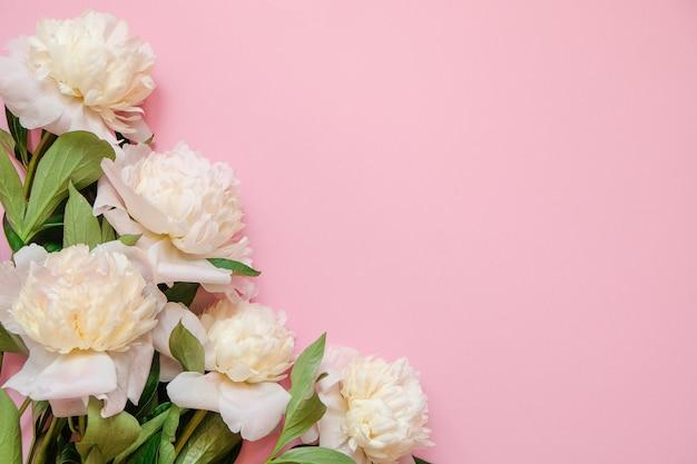 Bloemkader met verse takken van witte pioen op roze achtergrond met exemplaarruimte Premium Foto
