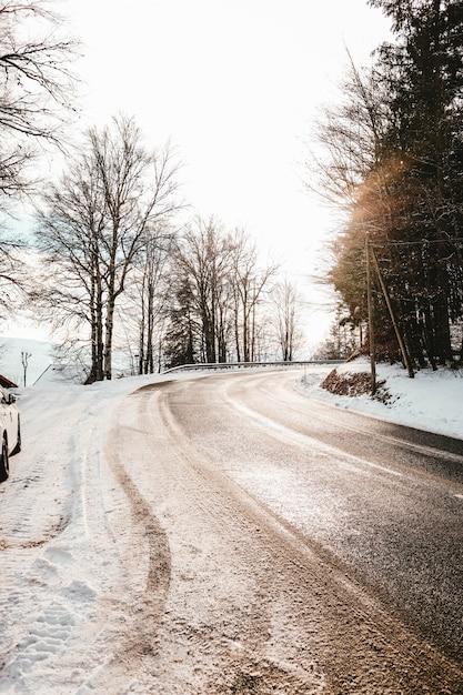 Bochtige weg bedekt met vuil en sneeuw omgeven door bomen onder zonlicht Gratis Foto