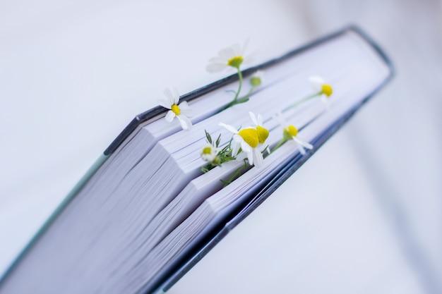 Boek versierd met witte margrietbloemen Premium Foto