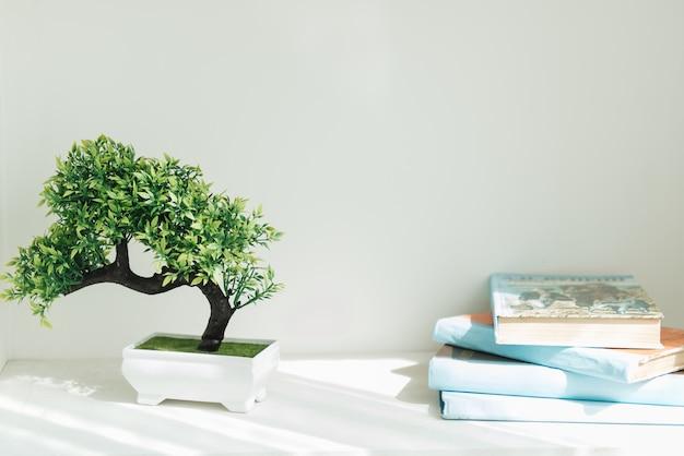 Boekenkast met blauwe boeken, bonsaiboom. wit interieur. het decor van de kamer. Premium Foto