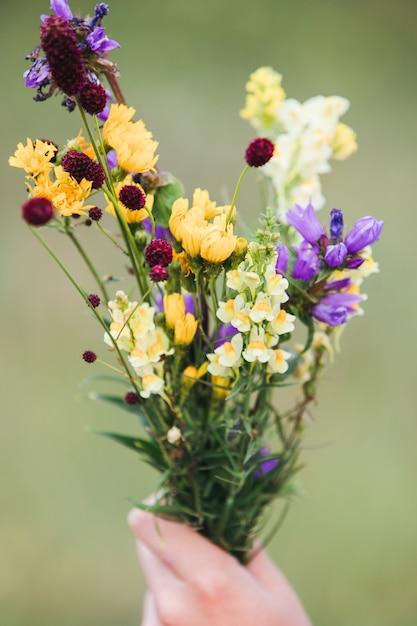 Boeket gemengde wilde bloemen in een hand. Premium Foto