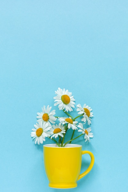 Boeket kamille madeliefjes bloemen in gele mok op pastel blauwe kleur papier Premium Foto