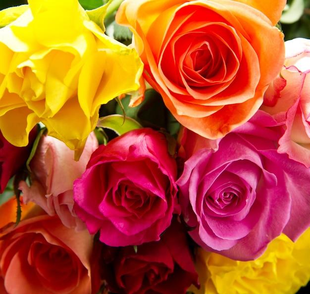 Boeket van kleurrijke rozen Premium Foto