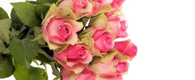 Boeket van roze rozen geïsoleerd op wit, panoramisch uitzicht Gratis Foto