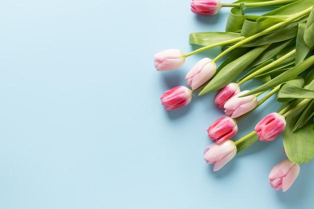 Boeket van roze tulpen op een blauwe achtergrond. Premium Foto