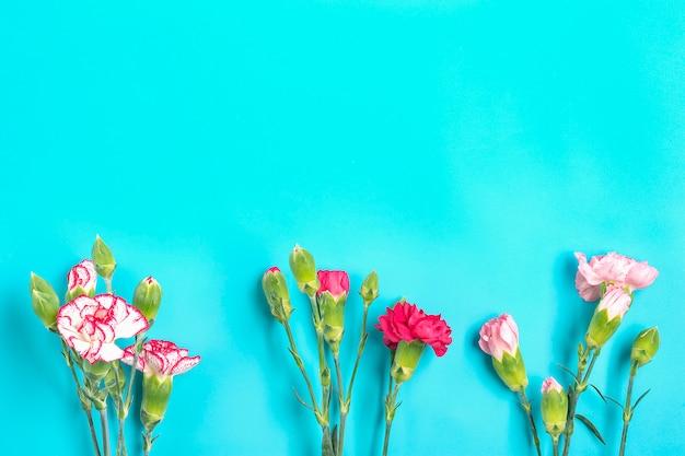Boeket van verschillende roze anjerbloemen op blauwe kleurrijke achtergrond Premium Foto