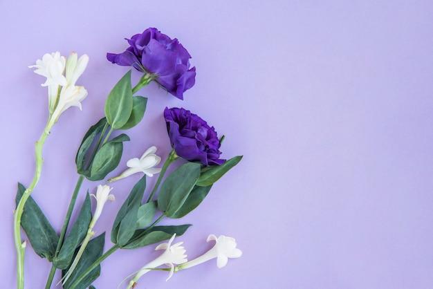 Boeket van witte en blauwe bloemen Gratis Foto