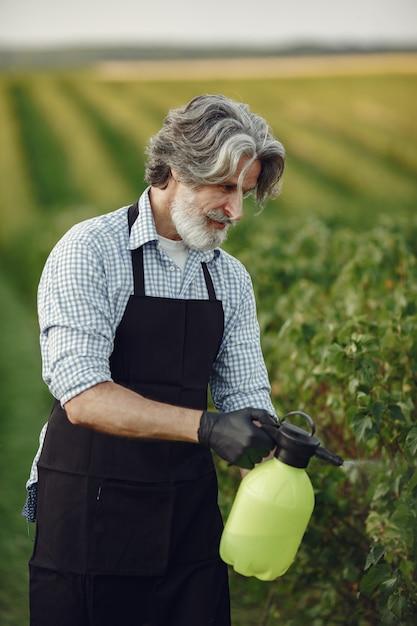 Boer sproeien groenten in de tuin met herbiciden. man in een zwart schort. Gratis Foto