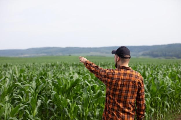 Boer wijst naar een groen veld met maïs. een Premium Foto