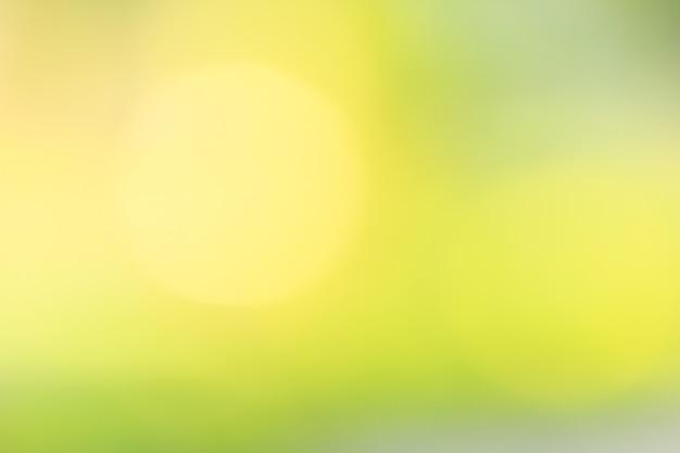 Bokehbladeren met zachte kleuren. Premium Foto