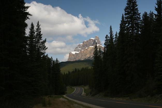 Bomen voor een klif in de nationale parken banff en jasper Gratis Foto