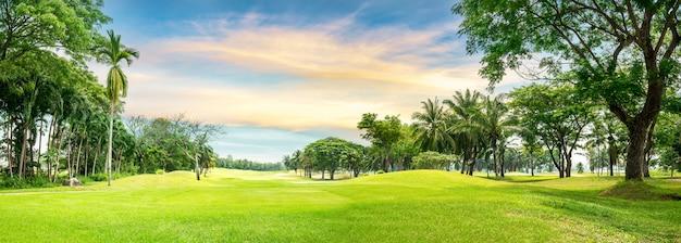 Boom in golfbaan Premium Foto