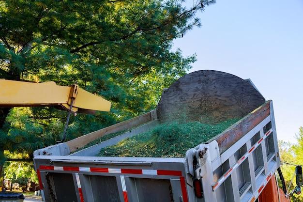 Boomversnipperaar machine slijpen boom in overdekte vrachtwagen in stedelijke buurt. Premium Foto