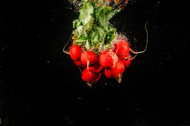 Bos rode roodval op zwarte achtergrond Gratis Foto