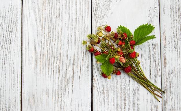 Bos van wilde aardbei Premium Foto
