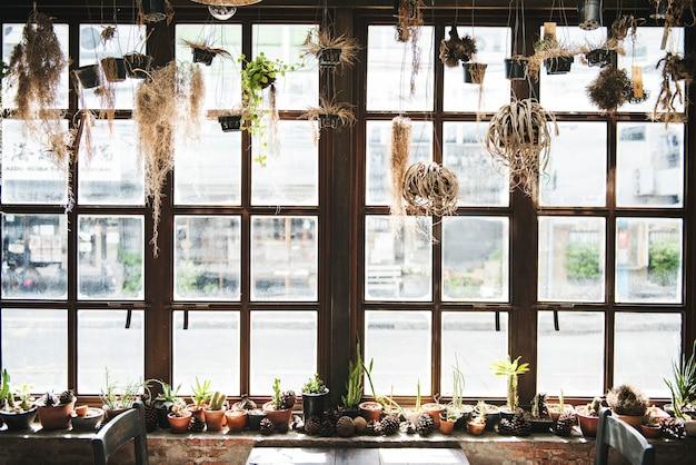 Botanical houseplant nature interior concept Gratis Foto