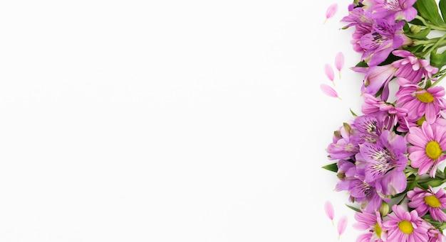 Boven menings bloemenframe met witte achtergrond Gratis Foto