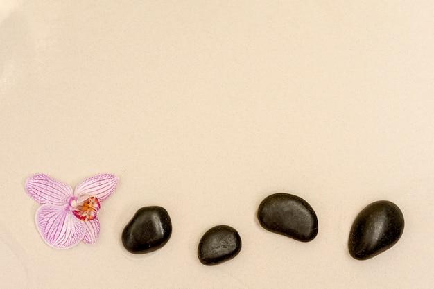 Boven weergave frame met bloem en stenen Gratis Foto