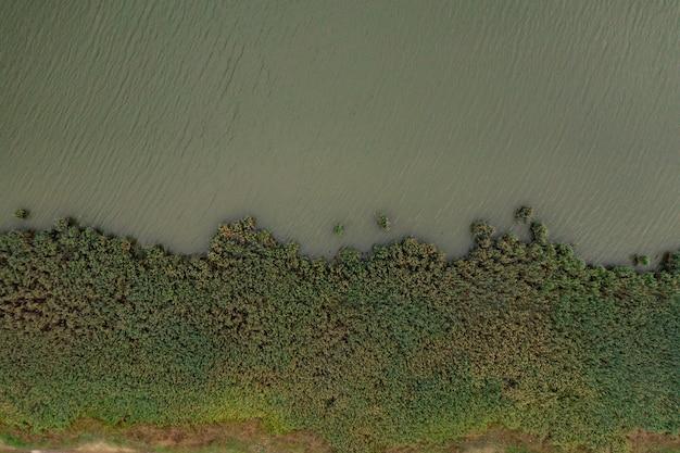 Bovenaanzicht af groen meerwater en flora. Gratis Foto