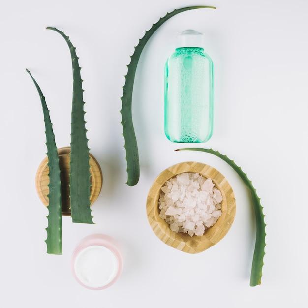 Bovenaanzicht aloë vera met schoonheidshulpmiddelen en cosmetica Gratis Foto