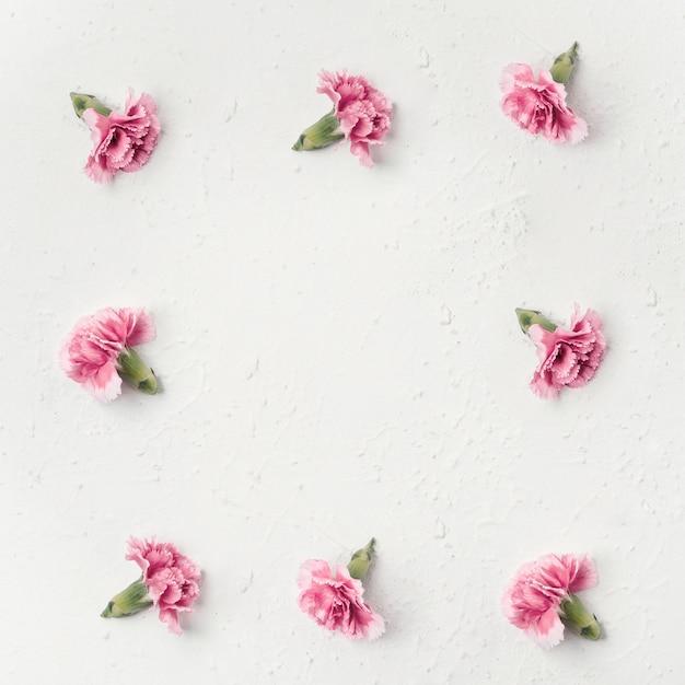 Bovenaanzicht anjer bloemen met kopie ruimte Gratis Foto