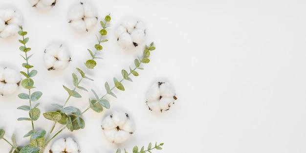Bovenaanzicht arrangement met katoenen bloemen en bladeren Gratis Foto