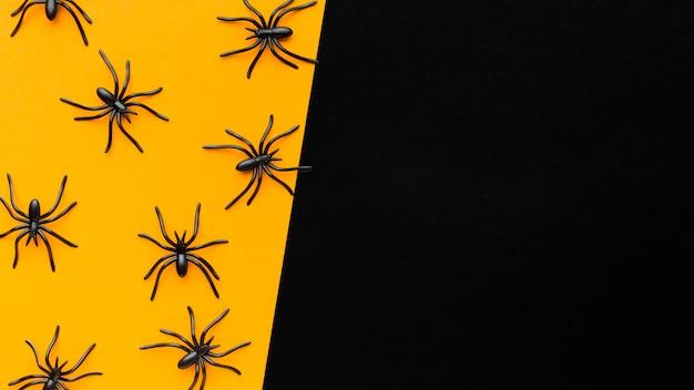 Bovenaanzicht assortiment van spinnen met kopie ruimte Gratis Foto