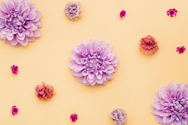 Bovenaanzicht bloemstuk op gele achtergrond Gratis Foto