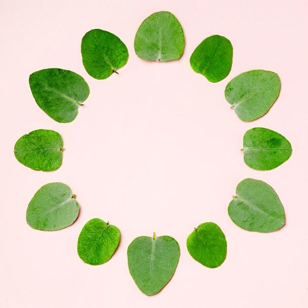 Bovenaanzicht collectie van groene bladeren op roze achtergrond Gratis Foto