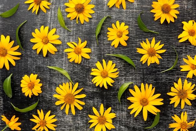 Bovenaanzicht gele madeliefjes arrangement Gratis Foto