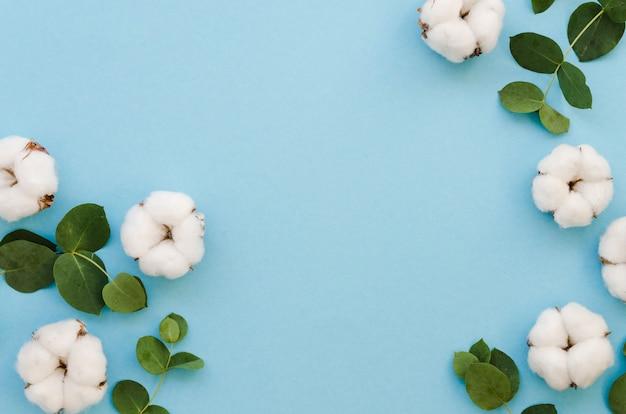 Bovenaanzicht katoen bloemen op blauwe achtergrond Gratis Foto