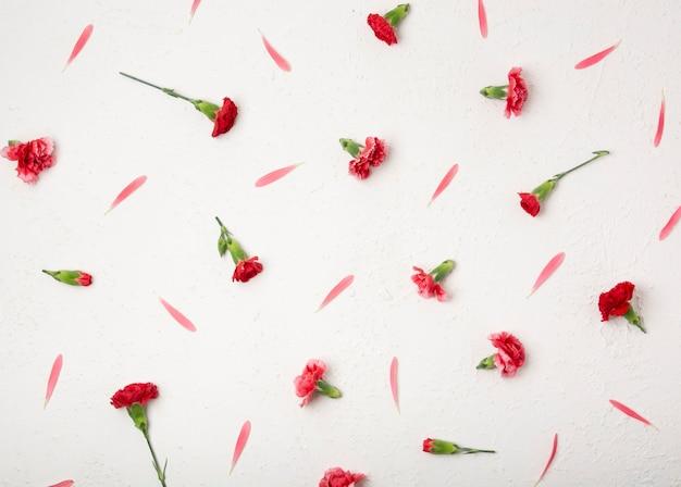 Bovenaanzicht kleine anjer bloemen en bloemblaadjes Gratis Foto