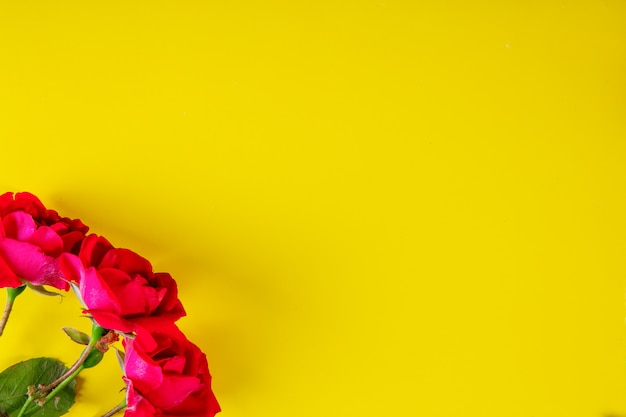 Bovenaanzicht kopie ruimte roze rozen op een gele achtergrond Gratis Foto