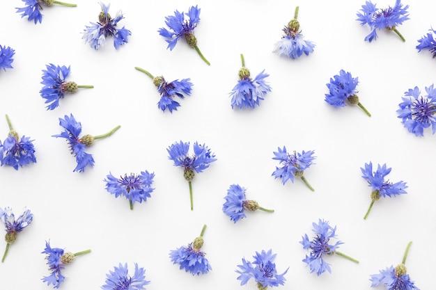 Bovenaanzicht korenbloemen arrangement Gratis Foto