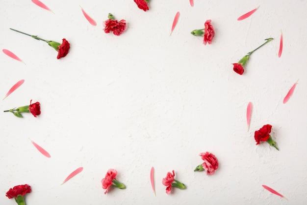 Bovenaanzicht natuurlijke frame van anjer bloemen Gratis Foto