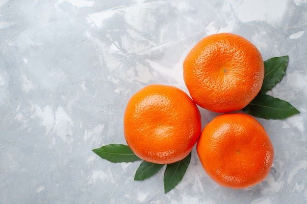 Bovenaanzicht oranje mandarijnen hele citrusvruchten op het licht bureau citrus exotisch sap fruit tropisch Gratis Foto