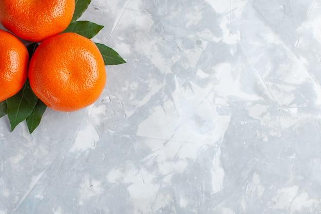 Bovenaanzicht oranje mandarijnen hele citrusvruchten op het licht bureau citrus exotisch sap fruit Gratis Foto