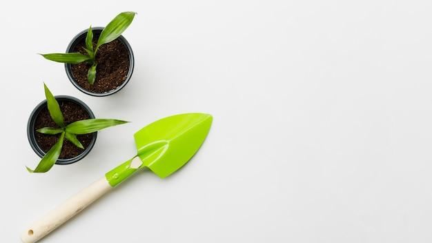 Bovenaanzicht planten met schop Gratis Foto