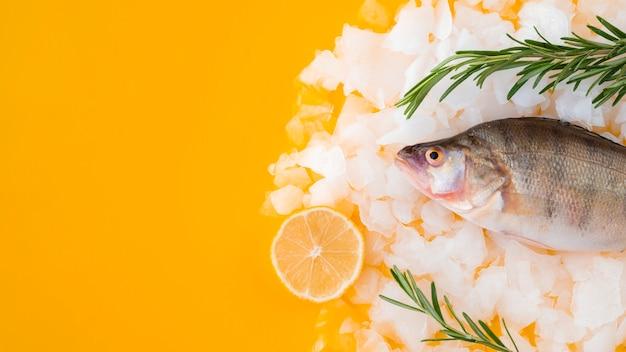 Bovenaanzicht rauwe vis op ijsblokjes Gratis Foto