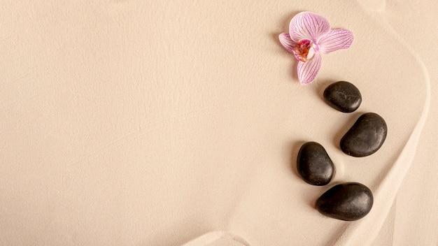 Bovenaanzicht regeling met bloem en stenen Gratis Foto