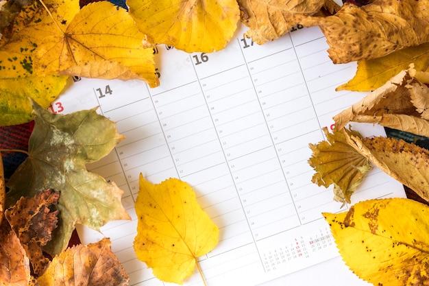 Bovenaanzicht regeling met gele bladeren op kalender Gratis Foto