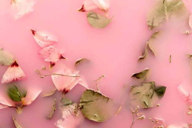 Bovenaanzicht roze bloemblaadjes in roze gekleurd water Gratis Foto