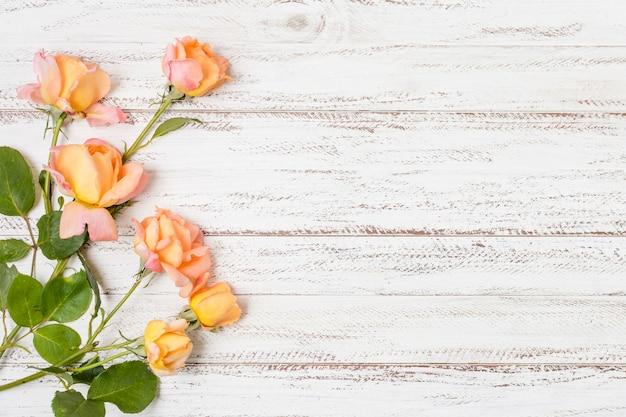 Bovenaanzicht stelletje oranje rozen met kopie ruimte Gratis Foto