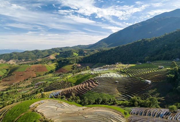 Bovenaanzicht terrasvormige rijstveld in mae cham chiangmai noord-thailand Premium Foto