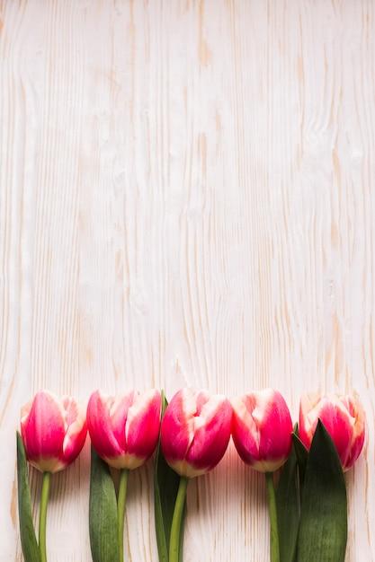 Bovenaanzicht tulpen op tafel Gratis Foto