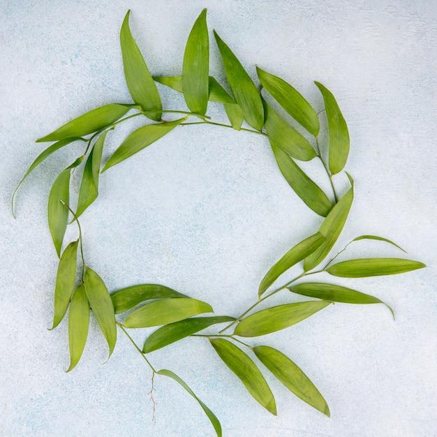 Bovenaanzicht van bladeren in ronde vorm op witte ondergrond Gratis Foto