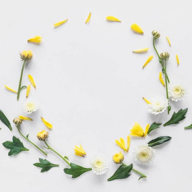 Bovenaanzicht van bloemen en bladeren Gratis Foto
