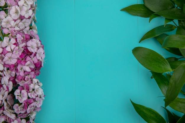 Bovenaanzicht van bloemen van lichtroze tinten met bladeren op een lichtblauw oppervlak Gratis Foto
