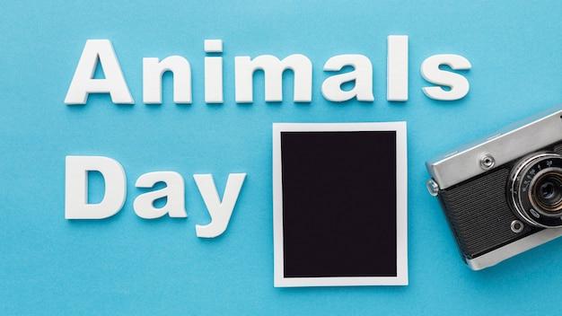 Bovenaanzicht van camera met foto voor dierendag Gratis Foto